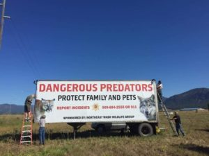 protect the wolves, ban grazing allotments